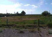 Excelente terreno c/ 5000m junto à estrada