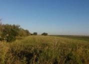 Excelente terreno agricola em ferreira do alentejo