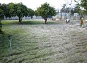 Vendo terreno na quinta pinhal das formas-quinta do anjo-palmela