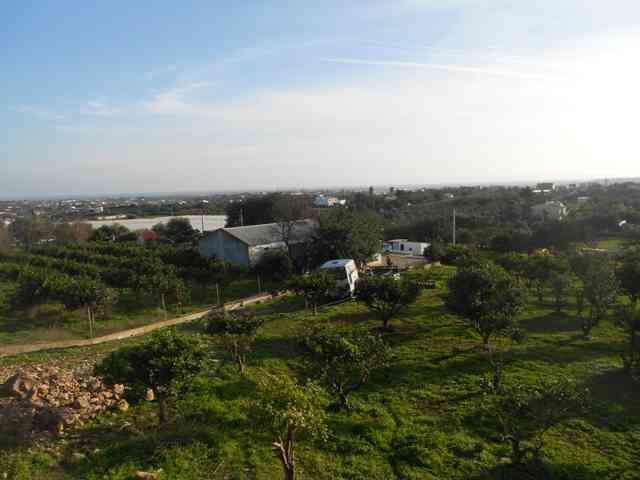 Quinta com casa, 3 armazéns, horta e 2 furos com 19.920 m2