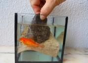 Leitos 3d flexÍveis (borracha própria aquários)