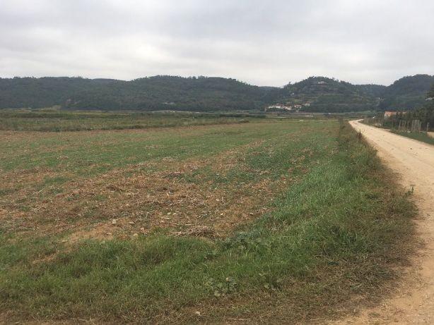 Alugo Propriedade cerca de 1 kc Zona regadia en Alcobaça
