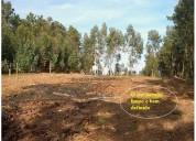Terreno urbano derreada cimeira pedrogao grande 685 m2 en palmela