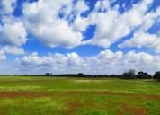 Terreno agricola nas faias st isidro de pegoes en montijo