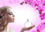 Área de perfumaria admite colaborador