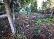 Optimo terreno em avintes para construcao en vila nova de gaia