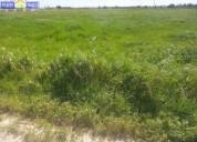 Terreno rustico c 11 632 m2 poceirao en palmela