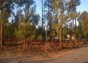 Terreno rustico de construcao en Águeda