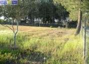 Terreno rustico c 5 500 m2 anexo montijo