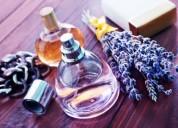 Perfumaria e lar - entrada imediata/full-time