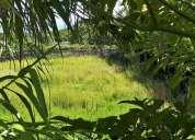 Terreno isolado para construcao na vila das capelas