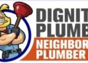 Dignity master plumber