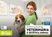 Curso de técnico auxiliar de veterinária